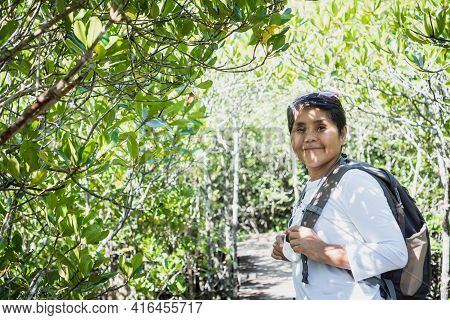 Traveler Of Senior Asian Woman Backpack On Walkway Wooden Bridge In Green Forest Jungle Of Mangrove