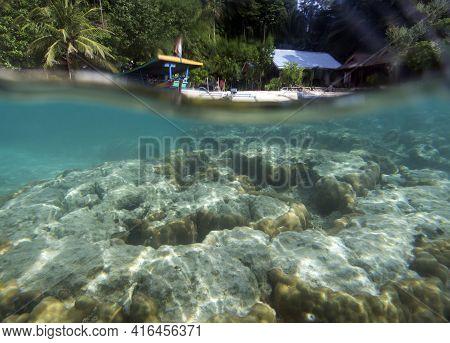 View Of Wonderful Reef In Togian Islands