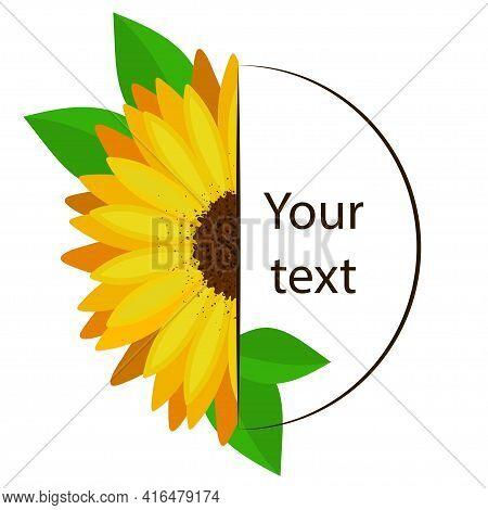 Monogram Of Half Sunflower Flower And Empty Text Frame.