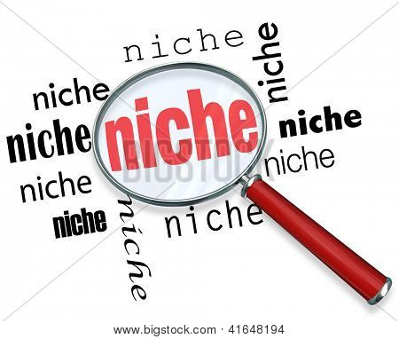A magnifying glass hovering over several instances of the word niche, symbolizing targeted marketing of small demographic groups