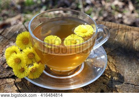 Cup Of Green Tea With Yellow Flowers. Useful Anti-inflammatory Herbal Tea From Medicinal Plants In G
