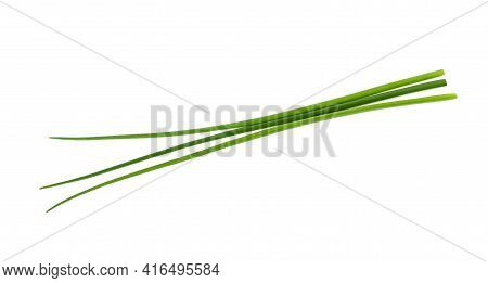 Fresh Chives  Isolated On A White Background