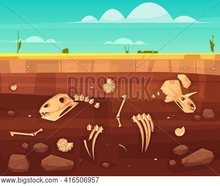 Dinosaurs Skulls, Reptile Skeleton Bones, Ancient Sea Molluscs Shells In Soil Deep Layers Cross Sect
