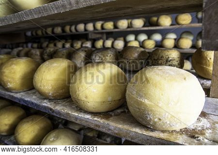 Cheese In Ripening Cellar On Familiar Industry In Brazil