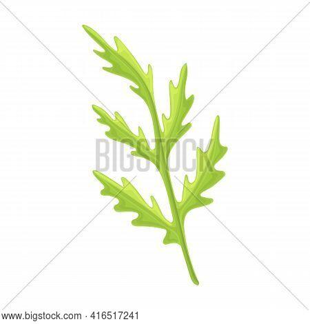 Poppy Flower Vector Cartoon Icon. Vector Illustration Poppy Red On White Background. Isolated Cartoo