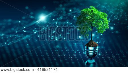 Tree With Soil Growing On  Light Bulb. Digital Convergence And And Technology Convergence. Blue Ligh