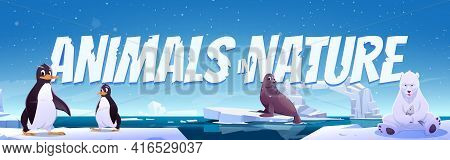 Animals In Nature Cartoon Banner. Wild Penguins, Polar Bear And Seal Sit On Ice Floes In Sea. Antarc