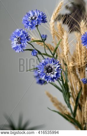 Minimalist Composition Of Dried Flowers In Vase As Home Decoration. Blue Cornflower On A Background