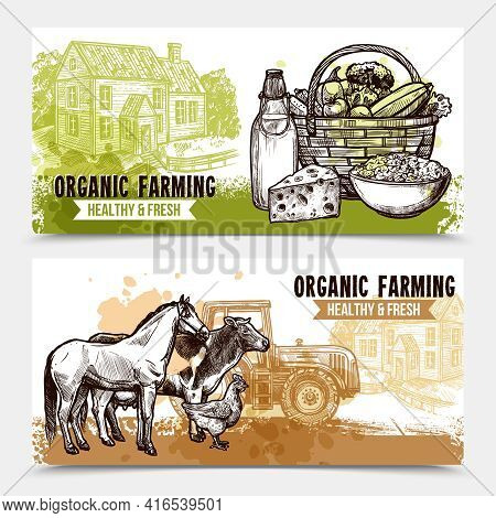 Organic Farming Horizontal Banners With Healthy And Fresh Food Farmhouse And Farm Animals On White B