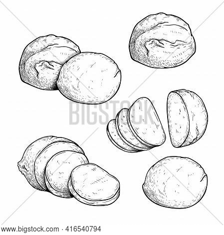 Hand Drawn Sketch Style Mozzarella Cheese Set. Traditional Italian Soft Cheese. Single, In Group, Wh