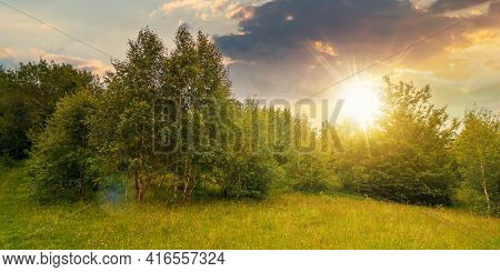 Trees On The Hill In Summer Scenery At Sunset. Beautiful Mountain Landscape On A Cloudy Day In Eveni