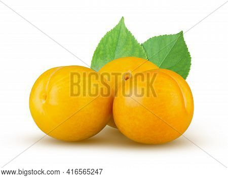 Three Yellow Plums With Leaves Isolated On White. Excellent Retouching And High Resolution. Fruit Co