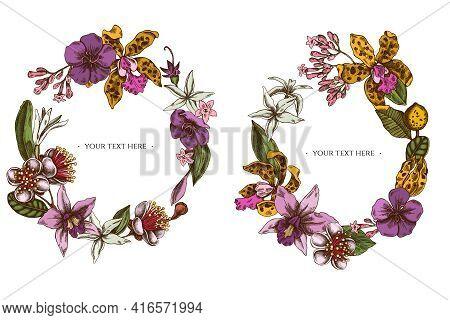 Floral Wreath Of Colored Laelia, Feijoa Flowers, Glory Bush, Papilio Torquatus, Cinchona, Cattleya A