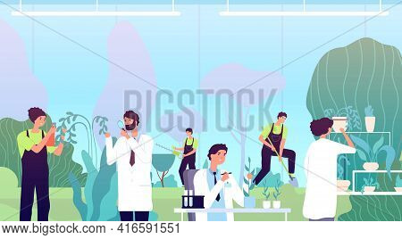 Work In Greenhouse. Herbs Scientist, People In Garden With Equipment. Botany Or Biology Research, Bl