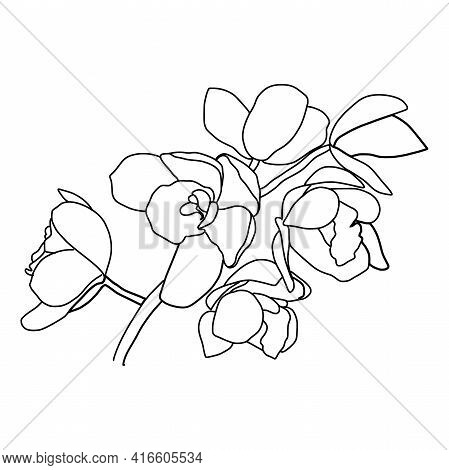 Abstract One Line Flowers. Botanical Contour Drawing. Organic Shapes Backgroud. Modern Minimal Art I