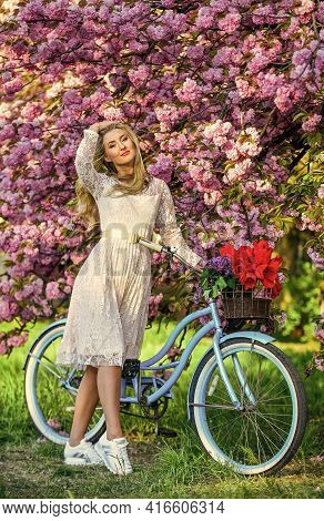 Spring In Her Basket. Woman In Garden. Young Fashionable Girl With Retro Bike Near Cherry Blossoms.