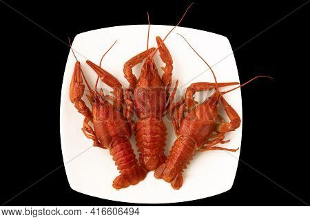 Three Red Boiled Crayfish On A White Square Plate On Wooden Table.