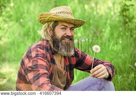 Make Wish. Peaceful Man In Straw Summer Hat. Bearded Man Blowing Dandelion Seeds In Park. Mental Hea