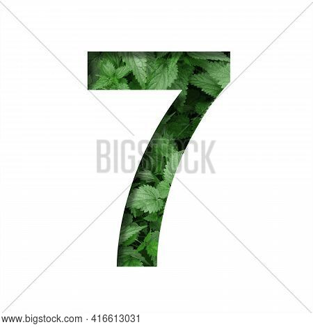 Font Made Of Leaves, Digit Seven, 7, Cut Out Of Paper On A Background Of Natural Green Nettle. Fresh
