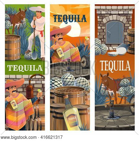 Tequila Mexican Alcohol Drink Production Banners, Vector. Mexican Man In Sombrero And Poncho With Bo