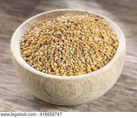 Organic Alfalfa Seeds In The Wooden Bowl - Medicago Sativa