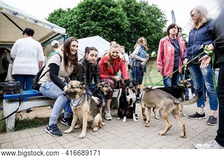 Volunteer Exhibition Of Stray Animal Minsk Belarus June 23 2018. Group Of People Are Happy Next To T