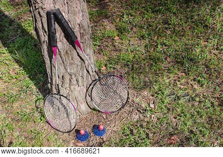 Two Brightly Colored Badminton Rackets And Shuttlecocks Stand Upright Against A Tree Trunk In A Coni
