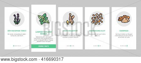 Aromatherapy Herbs Onboarding Mobile App Page Screen Vector. Lavender And Peppermint, Ginger And Fra