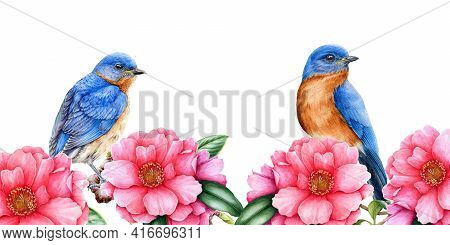 Eastern Bluebirds With Camelia Flowers Illustration. Spring Watercolor Image. Tender Pink Blossoms W