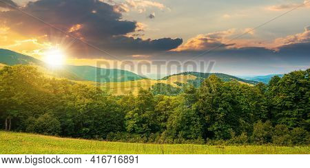 Summer Landscape Of Carpathian Mountains At Sunset. Beautiful Scenery In Evening Light. Beech Forest