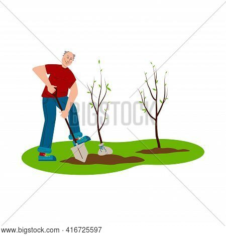 Seniors Plant Young Trees. A Man Is Digging The Ground. Elderly People Care, Active Lifestyle. Flat