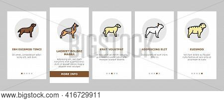 Dog Domestic Animal Onboarding Mobile App Page Screen Vector. Yorkshire And Rottweiler, Beagle And F