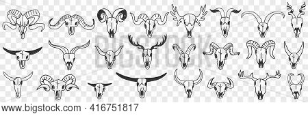 Buffalo Horns As Decorations Doodle Set. Collection Of Hand Drawn Various Horns Of Wild Buffalo Anim