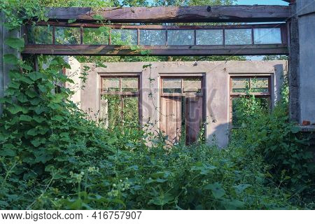 Abandoned Wrecked House With Empty Windows Overgrown With Green Ivy And Plants