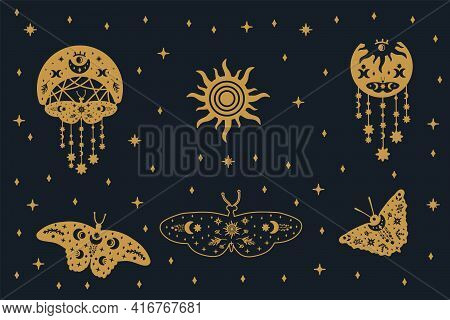Set Of Black And Gold Butterflies With Gold Doodle Wings. A Collection Of Illustrations With Flutter