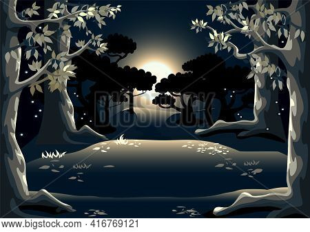 Forest Glade At Night