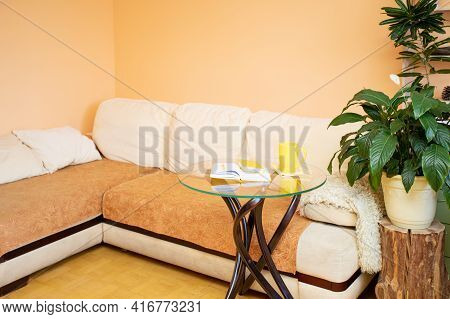 Home Real Cozy Interior For Relaxation With House Plants. Trend - Nature At Home.