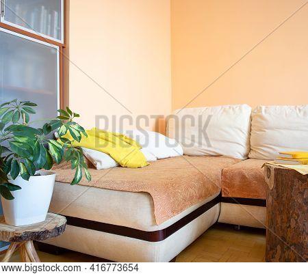 Comfortable Light Corner Recreation Area With Large Sofa, Green Shefflera, Wooden Creative Stands. C
