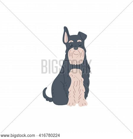 Funny Terrier With Black And White Fur Flat Vector Illustration Isolated.