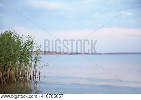 Picturesque View Of Beautiful River Beach With Reeds