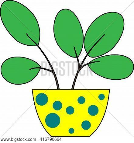 Flowerpot With Indoor Flower. Window Flowerpot Decoration Cartoon Drawing.