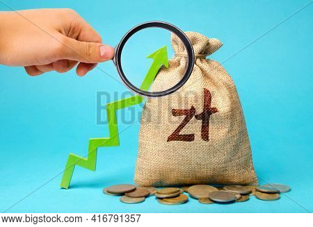 Polish Zloty Money Bag And Green Arrow Up. Growth Of Economy And Increase Of Investment Attractivene