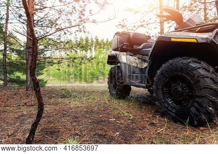 Atv Awd Quadbike Motorcycle Pov View Near Tree In Coniferous Pine Foggy Forest With Beautiful Nature