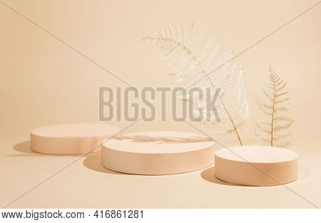 Abstract background with geometric podiums or pedestals for products presentation or exhibitions. Empty cylinder podiums and dried plant on pastel backdrop.