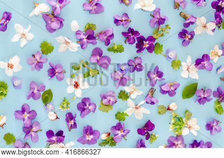 Floral Pattern Of Purple, Pink, White Flowers, Green Leaves, Flowers On A Blue Background. Flat Lay,