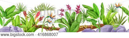 Jungle Seamless Border, Vector Tropical Leaf Frame Background, Plants, Rainforest Flowers, Banana, S