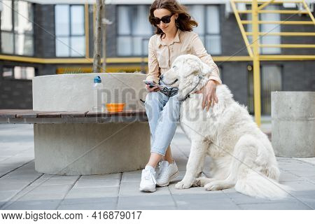 Cheerful Woman Sitting On Bench With Big White Dog In The Courtyard Of The Residence While Using Pho
