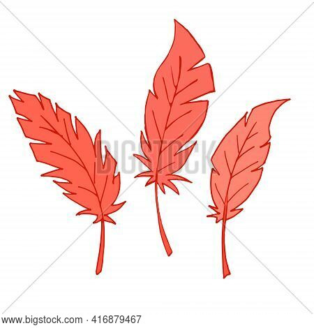 Set Of Feathers. Isolated Feathers On A White Background. Outline Illustration. Vector. Red Feathers