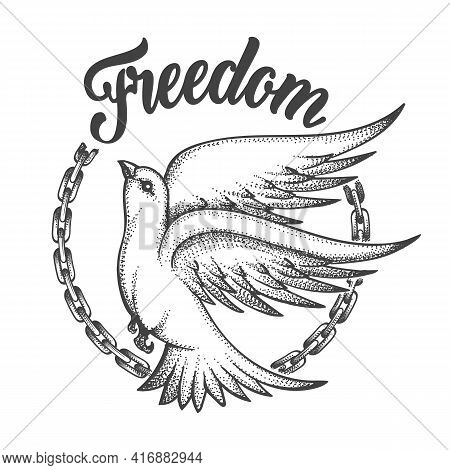 Freedom Dove With Broken Chain And Wording Freedom. Freedom Concept Tattoo On White Background. Vect