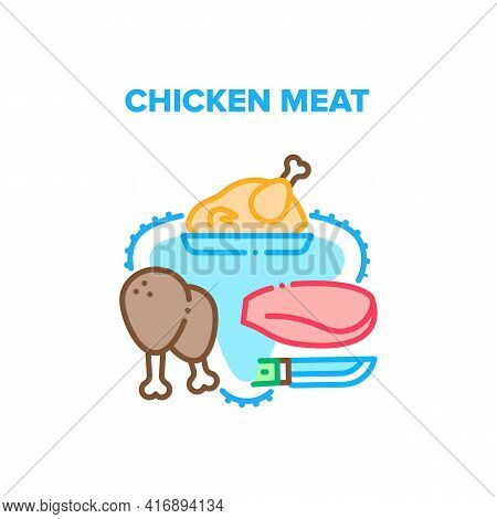 Chicken Meat Vector Icon Concept. Raw And Fried Chicken Meat Fillet And Legs, Grilled Bird Delicious